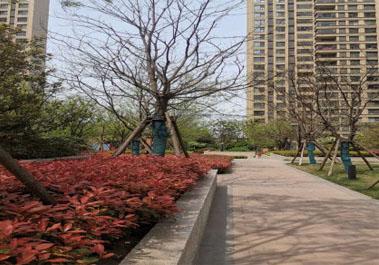 【绿地滨湖国际1号楼】家庭采暖普通住宅地暖系统安装施工现场