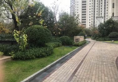 【智慧城3期29号楼】河南住宅采暖家庭供暖地暖系统施工现场